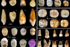 Homo sapiens have been present in China since at least 100,000 years ago 1
